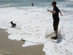 Tim & Truman Get Splashed at the Dog Beach. (03/27/2010)