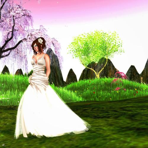 dressgarden