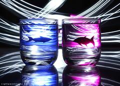 I miss you (Explored) (mxingm) Tags: longexposure light fish lightpainting art love glass night time led flashlight imissyou imissu project365
