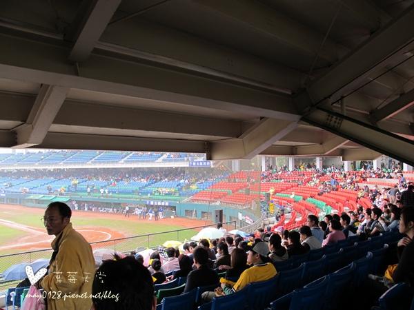 新莊看棒球2-2010.04.18