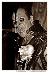 Misfits (Davide Merli) Tags: black last punk die earth live flag jerry ad only land horror darling davide caress danzig misfits merli hellfire megnano lastfm:event=1503195 lastfm:event=1432094