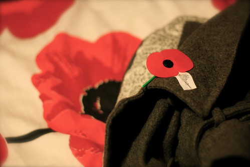 Friday: Poppy Day