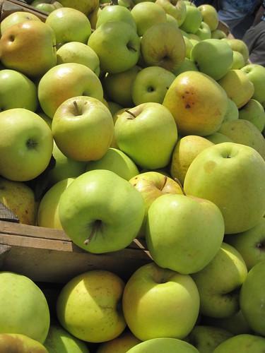 Greenmarket Apples