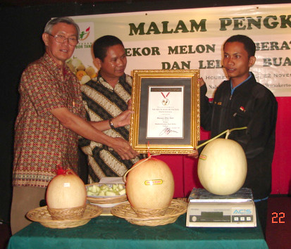 Rekor Melon