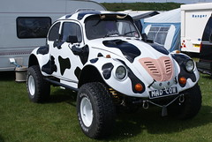 Mad Cow (BiggestWoo) Tags: park sun classic vw volkswagen cow seaside transport beetle may steam vehicles mad bankholiday madcow extravaganza meridian cleethorpes 2010 maybankholiday meridianpark cleethorpestransportextravaganza