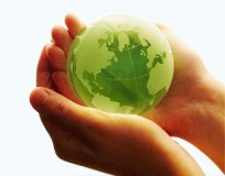 Build Business Credit by Going Green