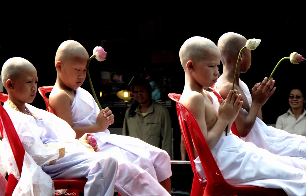 Young novice Buddhist
