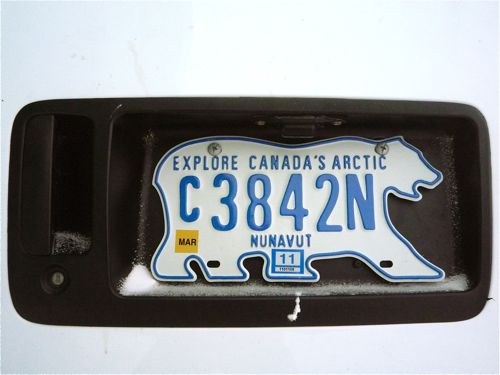 Polar Bear Number Plate