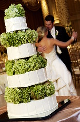 Special Events at the Gold Coast (The Drake Hotel Chicago) Tags: wedding cake reception bridal drakehotel goldcoast drake11 dopplr:stay=l231