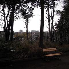 Inamura Park 04