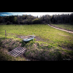 Green Pastures // #photog