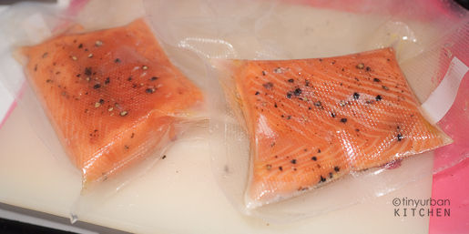 Vacuum Packed Salmon