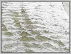 Meeresoberflche (sulamith.sallmann) Tags: wallpaper abstract texture wet water wasser struktur structure polen backgrounds surfaces abstrakt pol hintergrund sopot nass oberflche texturen textur feucht hintergrnde sulamithsallmann