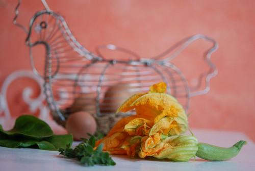 zucchini blossoms 2