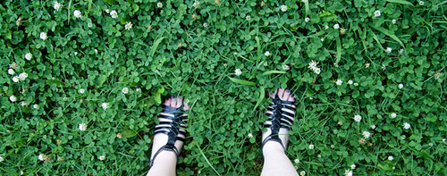 my feet in clover-filled yard