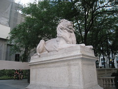 New York Public Library Lion