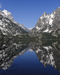Jenny Lake (bhophotos) Tags: travel blue usa lake snow mountains reflection nature water landscape geotagged nikon day calm canyon clear wyoming tetons observationpoint grandtetonnationalpark jennylake cascadecanyon d700 2470mmf28g projectweather