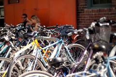 One in a million (Paul Henman) Tags: walks bikes bicycles brickworks ttf torontotrails torontotrailsfestival centraltorontoravines