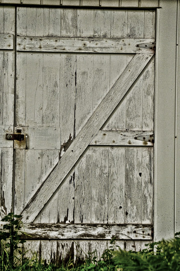 """Z"" on my Shed door"