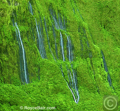 "'Wall of Tears' waterfalls, Maui, Hawaii (IronRodArt - Royce Bair (""Star Shooter"")) Tags: park travel wild summer vacation mountains west green tourism nature wet water ecology pool beautiful beauty wall forest landscape flow outdoors hawaii waterfall stream paradise tears natural outdoor scenic maui drop falls fresh spray clean foliage national valley tropical environment serene lush splash pure puu cascade tranquil dense waterscape purity kukui waihee puukukui wettest walloftears waiheevalley"