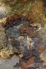 geothermal geothermal shs_n2_066982 (Stefnisson) Tags: hot iceland spring springs sland sinter hver kerlingarfjll silica deposits hverir kerlingafjoll kerlingafjll kerlingarfjoll hverasvi sinters geyserite hveratfelling hverahrur ksilhrur stefnisson