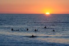 (Ana Pratas) Tags: ocean sunset pordosol sea sports delete10 delete9 delete5 delete2 mar surf delete6 delete7 save3 delete8 delete3 delete delete4 save save2 barra canoneos350d desporto aveiro canon55200