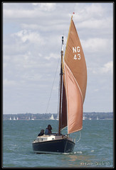 Carpe Diem (NG43) (leightonian) Tags: uk island boat sailing unitedkingdom yacht isleofwight solent gb isle cowes wight iow bluesail