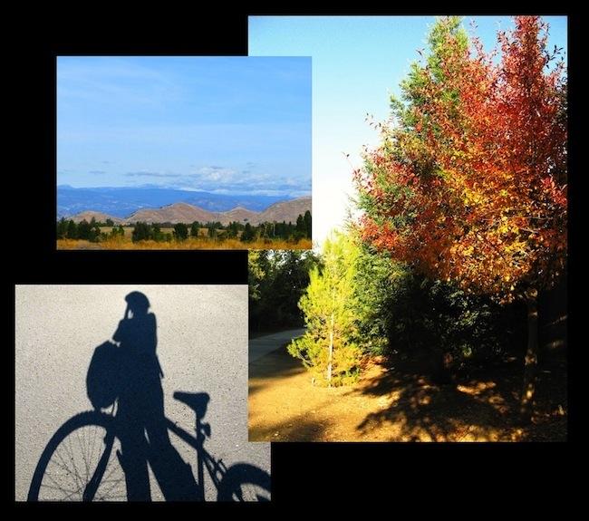 sunday bike ride oct.31.2010