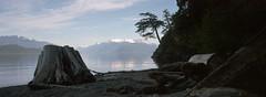 Harrison Lake (Orion Alexis) Tags: film 35mm analog panorama widescreen cinematic silhouette harrison lake shore beach mountain nature bc canada british columbia fujfilm superia 400 tx1 xpan rewq