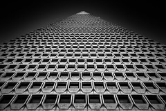 TransAmerica (Sean Batten) Tags: america california usa transamerica building skyscraper blackandwhite bw city urban nikon d800 2470 light shadow downtown architecture pyramid