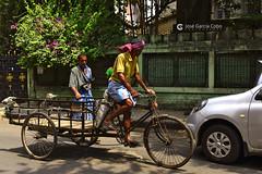 17-04-21 India-Orissa Kolkata (6) R01 (Nikobo3) Tags: asia india kolkata calcuta urban street social culturas color people gentes travel viajes tuktuks rickshaw nikon nikond800 d800 nikon247028 nikobo joségarcíacobo flickrtravelaward ngc