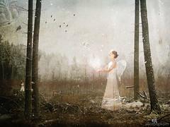 light angel (by alicepopkorn)