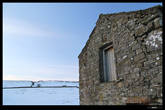 dales_barn (Tony West 2009) Tags: snow water stone sheep yorkshire walls dales huskie