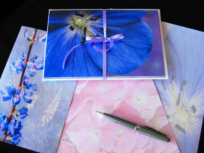 A display of a set of four flower blank all occasion cards.