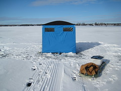 Fort Clam (REGOR NOTPUL) Tags: icefishing haybay clam2000