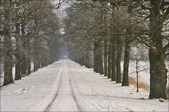 Lane in the winter (Foto Martien (thanks for over 2.000.000 views)) Tags: winter snow holland dutch zeiss sony sneeuw nederland lane alpha dieren ijssel uiterwaarden gelderland roundtower brummen floodplain laantje oprijlaan riverijssel weggetje geldersetoren spankeren anawesomeshot rondetoren uiterweerd 1680martien martienarnhem gelderseijssel martienholland geldersetower 350a350carl
