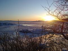 Winter morning at the coastline.
