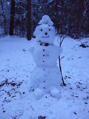 Schneemann im Wildenloh (feuermelder2009) Tags: schneemann ammerland wildenloh