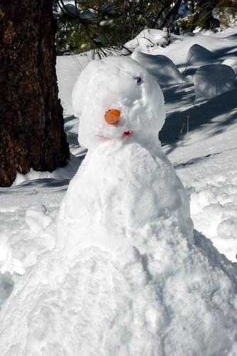 Snow Jan 2010