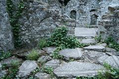 Olympos ruins (Kath's World Through a Lens) Tags: stone turkey vines ruins olympos mosai