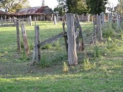 Bella Vista Yards (Xtoffa) Tags: s5 wow1 bellavistafarm canons5 mygearandmepremium xtoffa flickrstruereflection1 rememberthatmomentlevel1