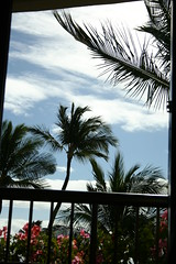 The Sun Came Out (LauraClements) Tags: hawaii mauihawaii julietclaire