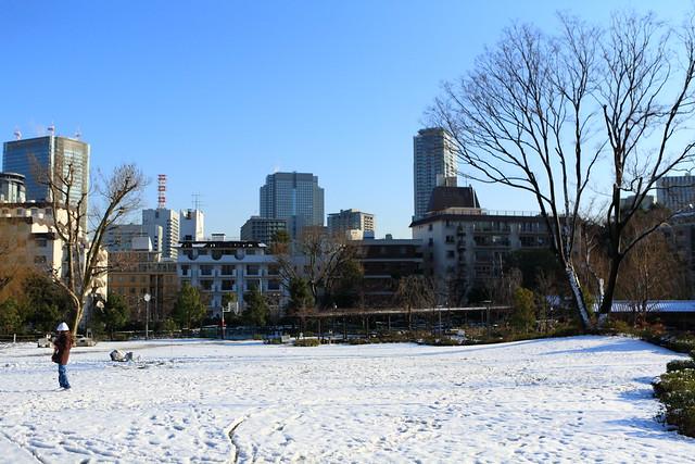 都心の積雪