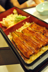 Tokyo 2009 - 上野 - 梅川亭伊豆榮 (3)