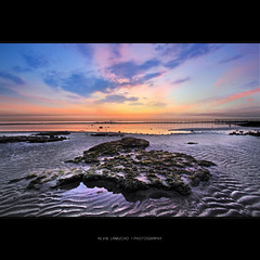 wings of the dawn [HDR] (alvin lamucho ) Tags: ocean longexposure blue sea seascape wet yellow clouds sunrise island dawn sand purple jetty middleeast wideangle foliage poles lowtide kuwait 1022mm hdr persiangulf psalm uwa fintas rebelt1i alvinlamucho