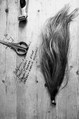 bad hair day (tupid) Tags: hair tupid haar tupidbe