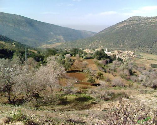 Wachkrad Beni Znassen وشكراد جبال بني يزناسن