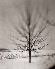 LZ1: Reveal (bvl.magnuson) Tags: winter blackandwhite bw distortion snow landscape nebraska swing 4x5 omaha tilt vignette ilfordhp4 largeformat movements 2010 lakezorinsky