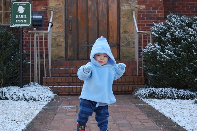 Snow Owen