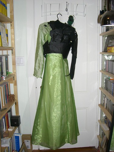 Green dress + black Borg parts + Borg parrot